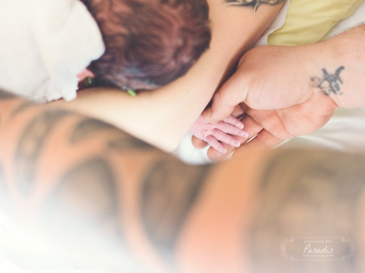 saco maine birth photographer