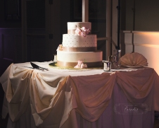 paradis photography new england wedding photographer