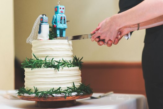Maine wedding photographer Wedding Cake Robots Grace Restaurant Maine