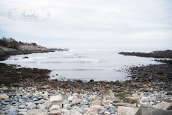 Perkins Cove Maine Engagement Session