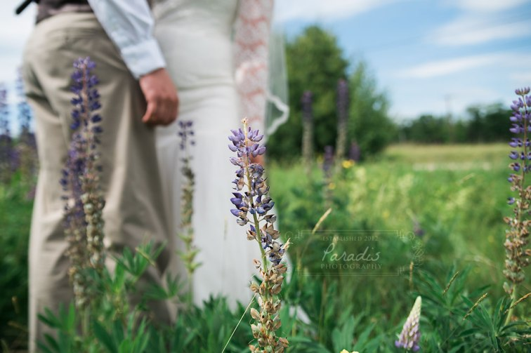 Bride + Groom | Paradis Photography | Coolidge Family Farm