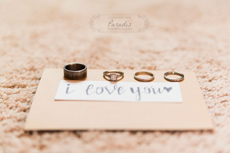 The rings | Paradis Photography | Coolidge Family Farm