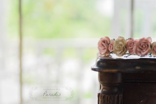 Flower crown| Paradis Photography | Coolidge Family Farm